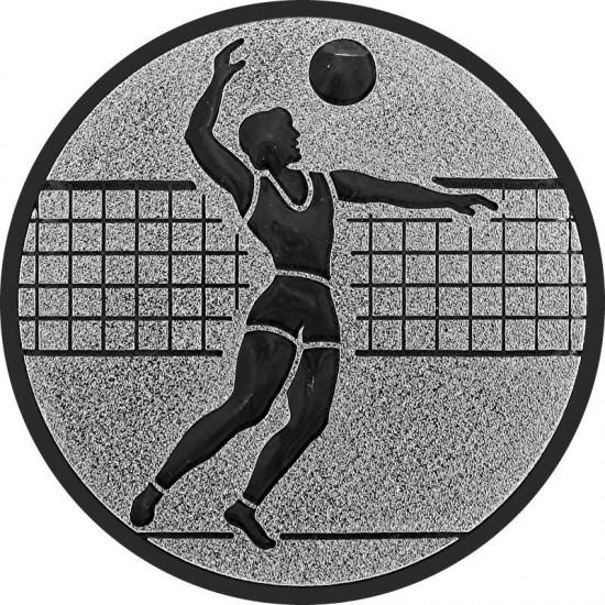 MA019 Volleybal heren