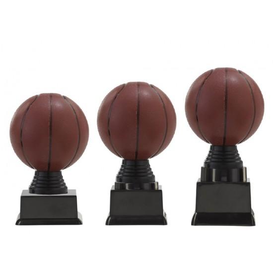 PF301.2 Basketbal